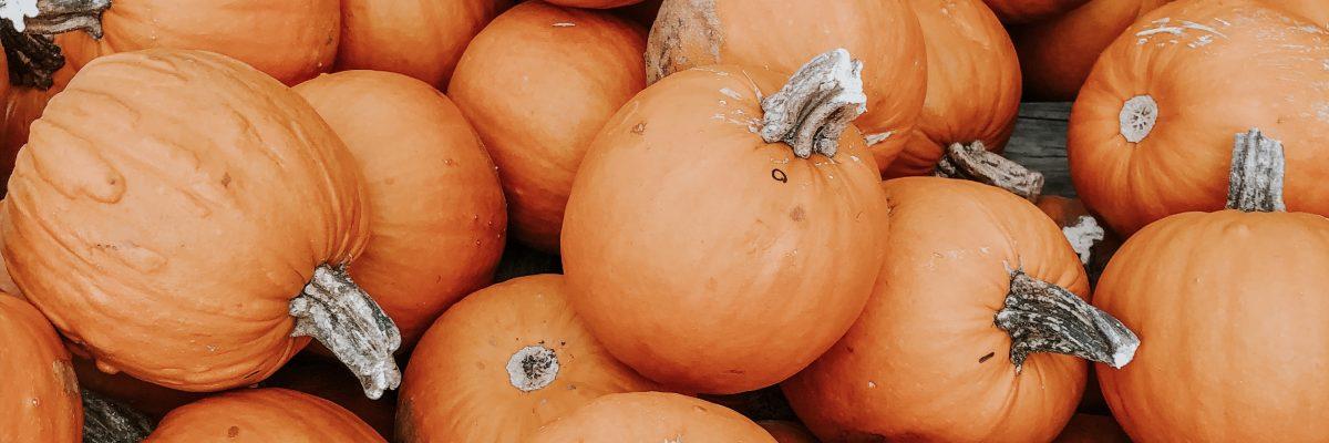 Pumpkin Patch Outfit Ideas | LexTober