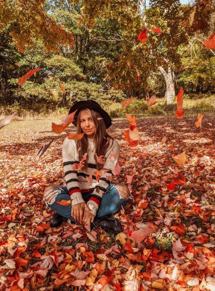 Leaves Are Falling | LexTober